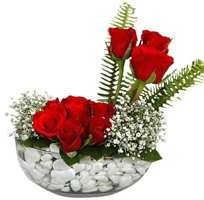 cam içerisinde 9 adet kirmizi gül  Karşıyaka internetten çiçek siparişi