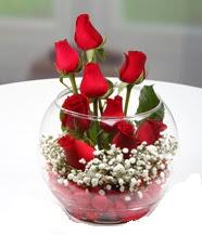 Cam fanus içerisinde 9 adet kırmızı gül  Karşıyaka internetten çiçek siparişi