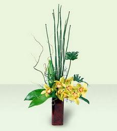Karşıyaka çiçekçi mağazası   cam yada mika Vazoda dal orkide tanzim