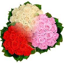 3 renkte gül seven sever   Karşıyaka çiçek satışı