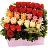 15 adet renkli gül ve cam   Karşıyaka hediye çiçek yolla