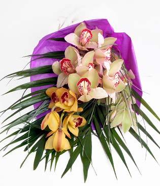 Karşıyaka cicek , cicekci  1 adet dal orkide buket halinde sunulmakta