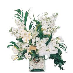 Karşıyaka çiçekçiler  sadece beyazlardan olusmus mevsim cam yada mika tanzim