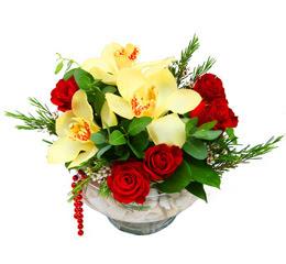 Karşıyaka çiçek yolla  1 kandil kazablanka ve 5 adet kirmizi gül