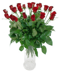 Karşıyaka çiçek gönderme  11 adet kimizi gülün ihtisami cam yada mika vazo modeli