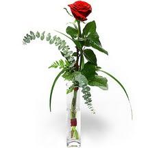 Karşıyaka uluslararası çiçek gönderme  Sana deger veriyorum bir adet gül cam yada mika vazoda