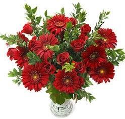 5 adet kirmizi gül 5 adet gerbera aranjmani  Karşıyaka ucuz çiçek gönder