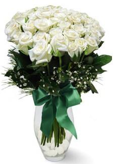 19 adet essiz kalitede beyaz gül  Karşıyaka internetten çiçek satışı
