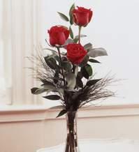 Karşıyaka çiçek siparişi sitesi  Vazoda 3 adet güzel gül