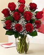 Sevgilime hediye 9 adet 1.ci kalite gül  Karşıyaka 14 şubat sevgililer günü çiçek