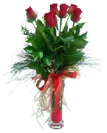 vazo içerisinde 5 kırmızı gül  Karşıyaka kaliteli taze ve ucuz çiçekler