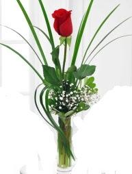 Cam içerisinde 1 kırmızı gül  Karşıyaka İnternetten çiçek siparişi