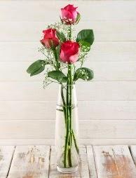 Cam içerisinde 3 kırmızı gül  Karşıyaka çiçekçi telefonları