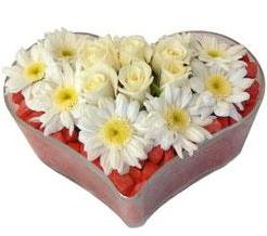 Kalp içerisinde 7 beyaz gül ve papatyalar  Karşıyaka çiçek siparişi sitesi