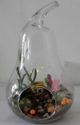 Orta boy cam armut terrarium  Karşıyaka çiçekçi telefonları