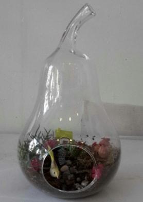 Armut orta boy cam terrarium tanzim  Karşıyaka çiçek gönderme