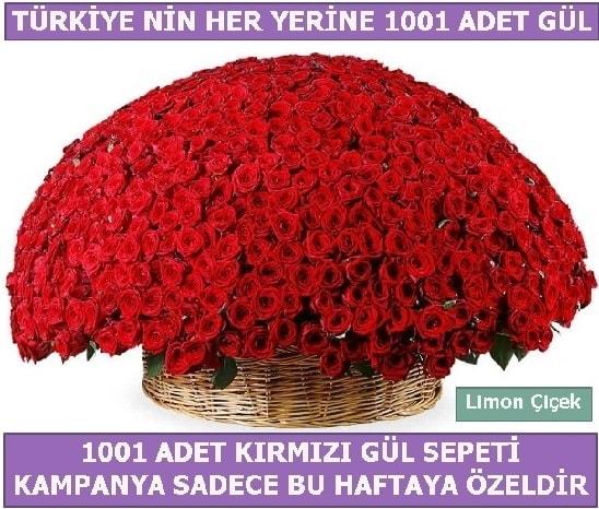 1001 Adet kırmızı gül Bu haftaya özel  Karşıyaka çiçek yolla , çiçek gönder , çiçekçi