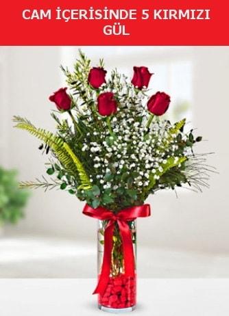 Cam içerisinde 5 adet kırmızı gül  Karşıyaka çiçekçi mağazası