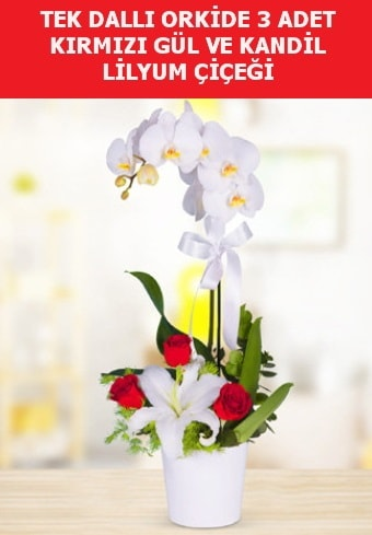 Tek dallı orkide 3 gül ve kandil lilyum  Karşıyaka çiçek gönderme sitemiz güvenlidir