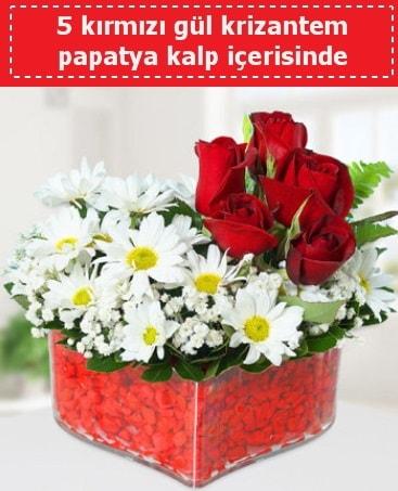 mika kalp içerisinde 5 kırmızı gül papatya  Karşıyaka çiçek yolla