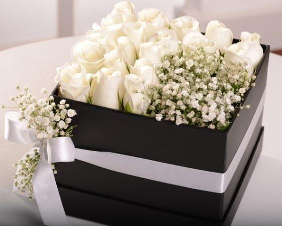 Kutu içerisinde 19 beyaz gül ve cipsofilya  Karşıyaka çiçek satışı