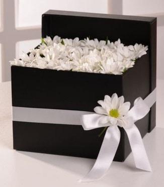 Kutuda beyaz krizantem papatya çiçekleri  Karşıyaka çiçekçi mağazası