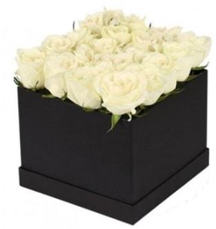 Kare kutuda 19 adet beyaz gül aranjmanı  Karşıyaka çiçek gönderme